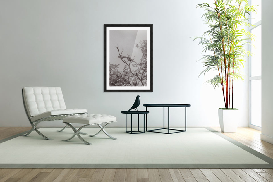 Couple of Parrots in the Top of a Tree in Custom Picture Frame