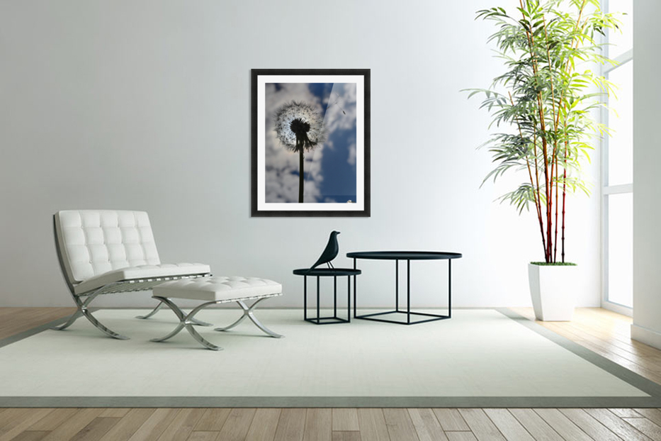 Dandelion in Custom Picture Frame