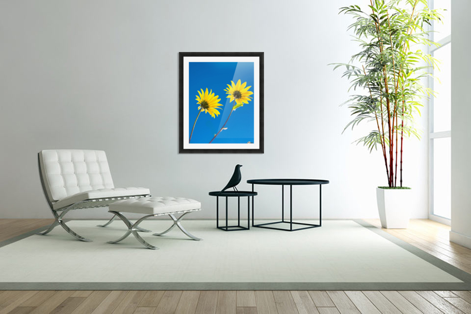 Yellow flowers and blue sky in Custom Picture Frame