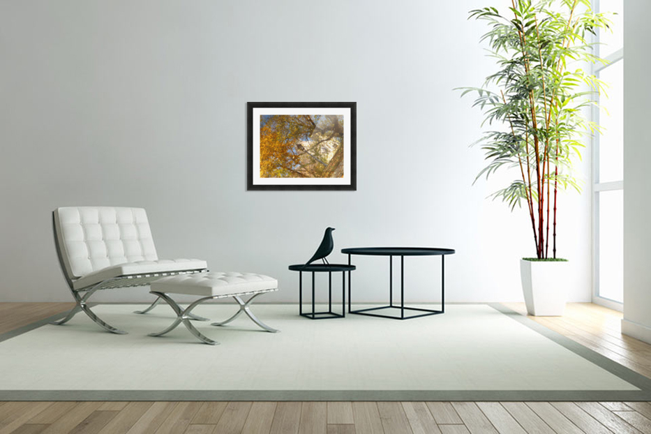 Autumn Reflections I in Custom Picture Frame