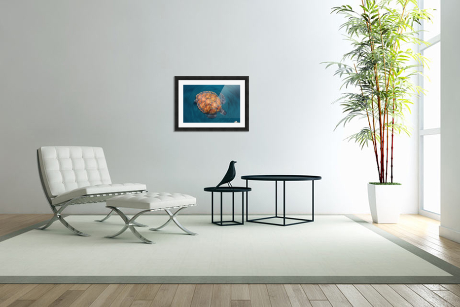 spin turtle in Custom Picture Frame