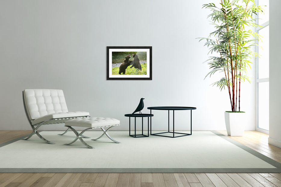 Two Grizzly Bears Fighting in Custom Picture Frame
