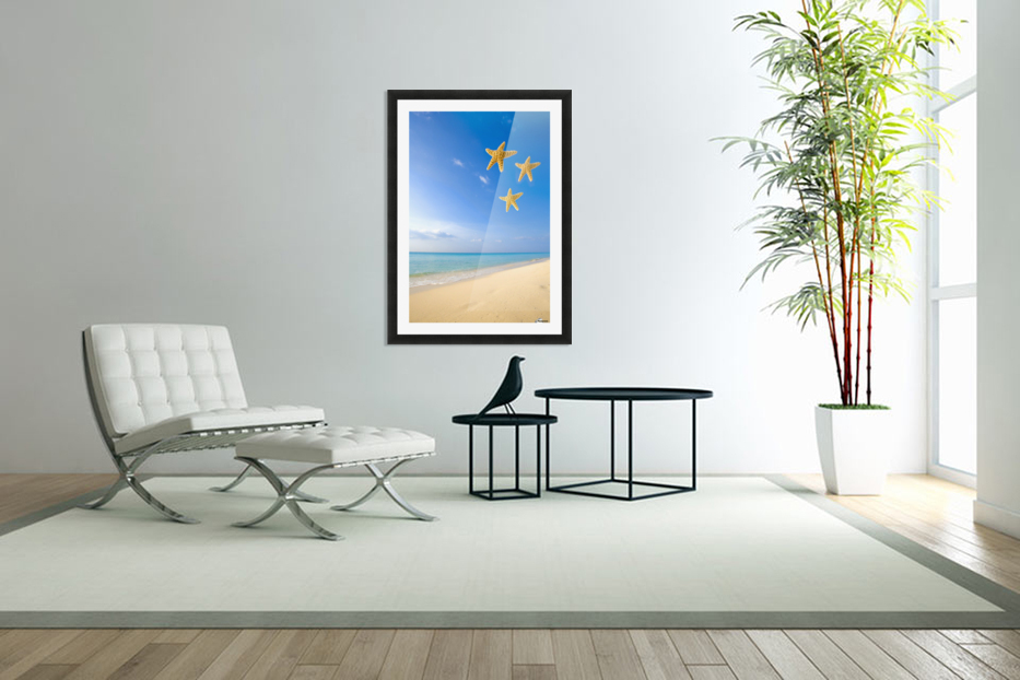 Starfish Falling In Front Of The Ocean in Custom Picture Frame