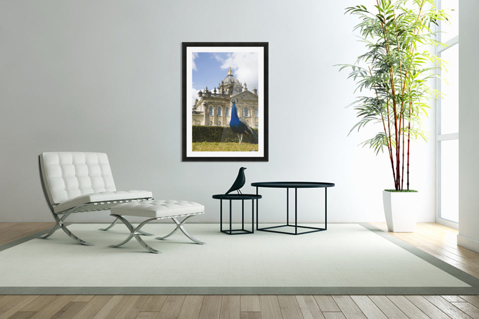 Peacock In Front Of A Building in Custom Picture Frame