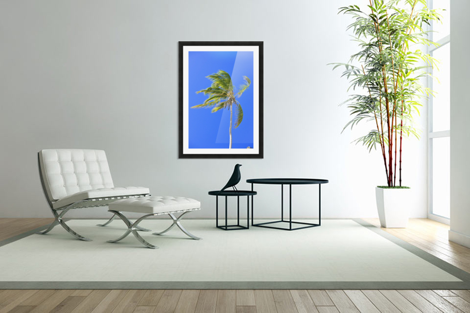 Palm Tree Against Clear Blue Sky in Custom Picture Frame