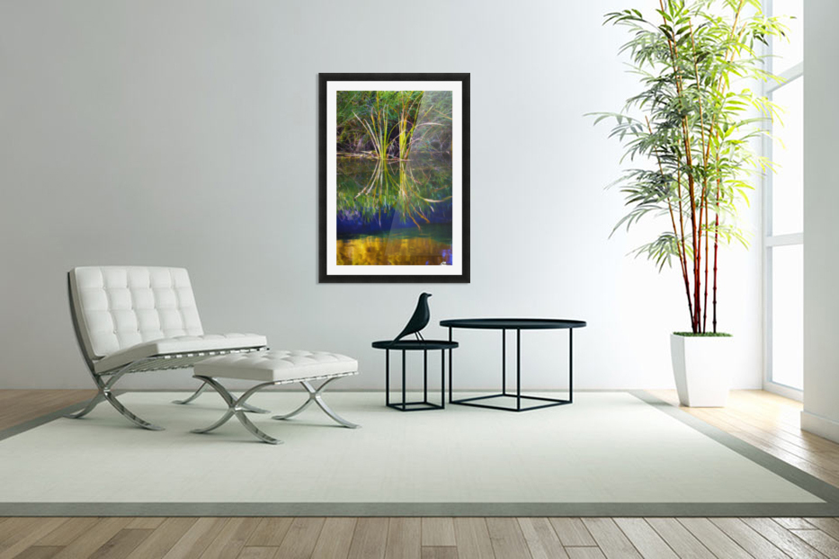 Reeds Reflecting On The Water; St. Albert, Alberta, Canada in Custom Picture Frame
