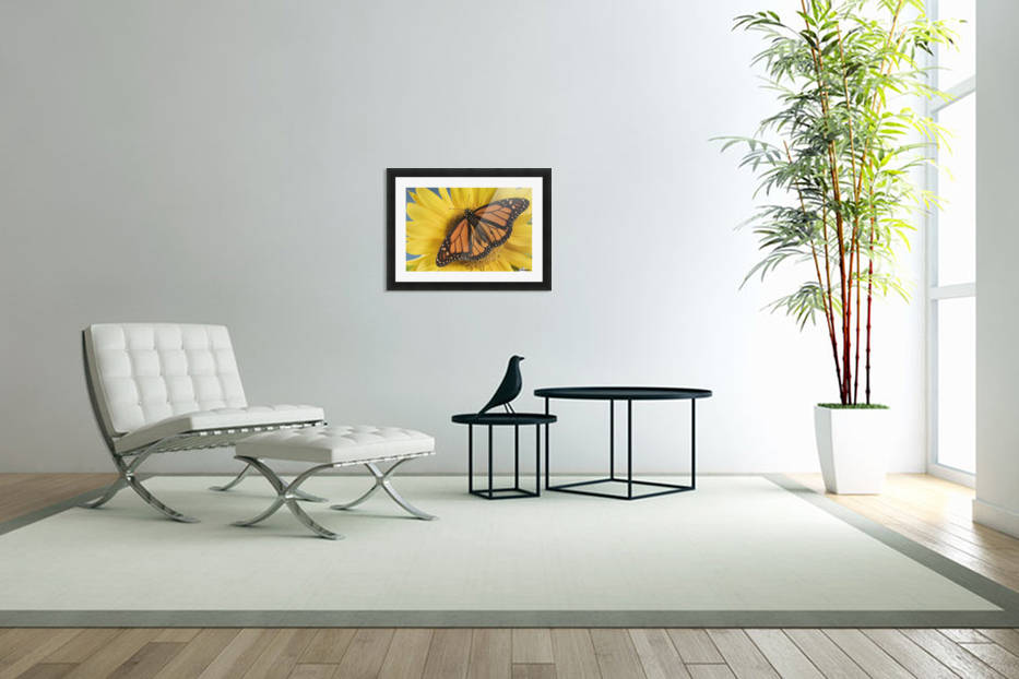 Monarch Butterfly On Sunflower. in Custom Picture Frame