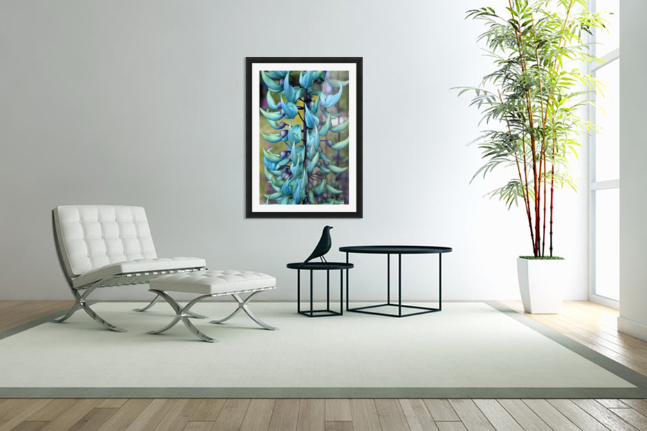 Blue jade plant; Hawaii, United States of America in Custom Picture Frame