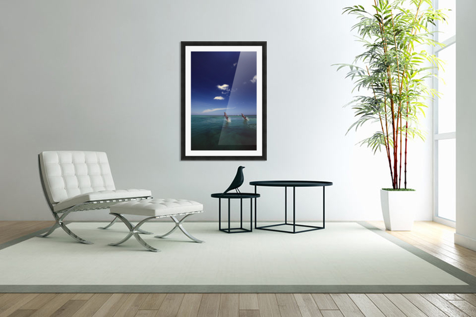 Two Bottlenose Dolphins Dancing Across Water On Tails, Caribbean Sea in Custom Picture Frame