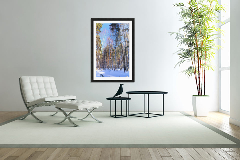 Winter. Forest. Shadow in Custom Picture Frame
