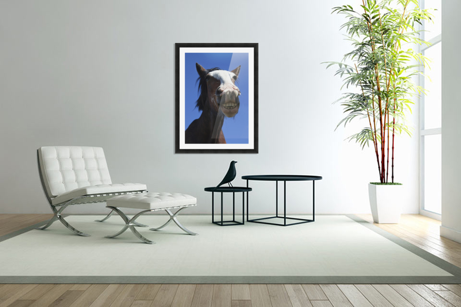 A Horse Smiling And Showing It's Teeth; Northumberland, England in Custom Picture Frame