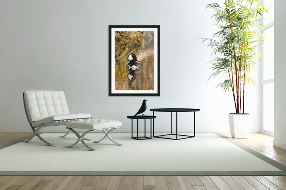 Hooded Merganser Drake Reflection-portrait in Custom Picture Frame