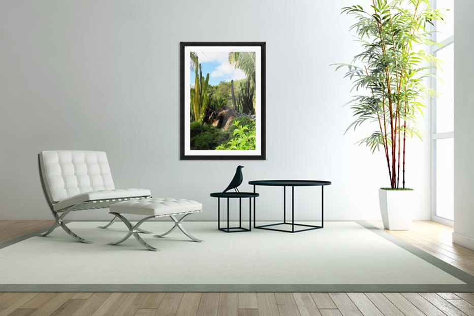 Nevis cactus in Custom Picture Frame