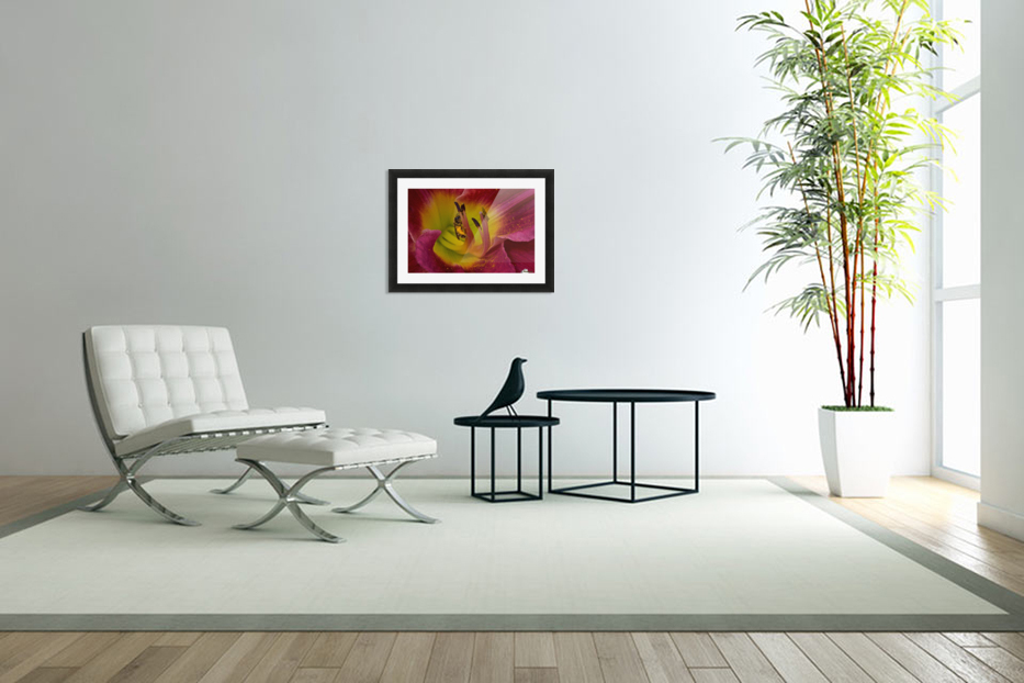 Bee Inside Corn Lily - Landscape in Custom Picture Frame