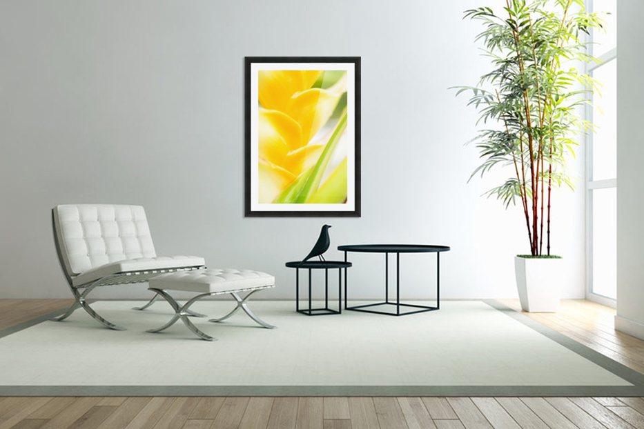 Hawaii, Oahu, Close-Up Of Heliconia Plant. in Custom Picture Frame