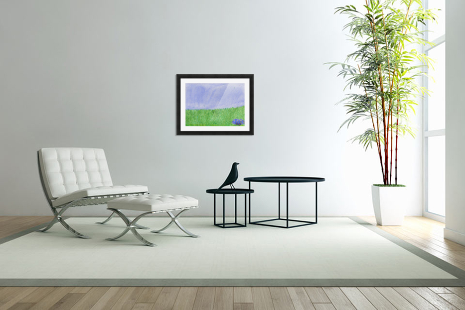 field of grass in Custom Picture Frame