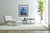 Composite: Close Up Of Orca Whales As They Surface In Lynn Canal With The Coast Range Mountains In The Background, Inside Passage, Southeast Alaska  Acrylic Print