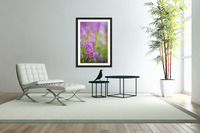 Fireweed Detail Near Anchor Point On The Kenai Peninsula In Southcentral Alaska.  Acrylic Print