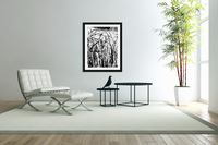 Black & White Nature Texture  Acrylic Print