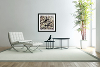 Only  Acrylic Print
