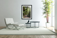 Urban Forests  Acrylic Print