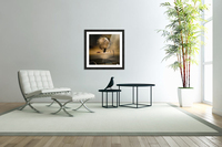 Even in the quietest Moment  Acrylic Print