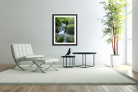 Small Waterfall in the German Black Forest  Acrylic Print