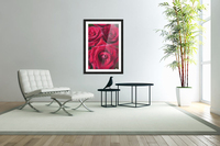 Red Roses; Quebec, Canada  Acrylic Print