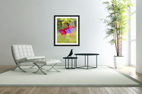 Close up of fuchsia and insect in garden; South-central Alaska; Eagle River, Alaska, United States of America  Acrylic Print