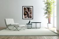 Juxtaposed Nature I  Acrylic Print