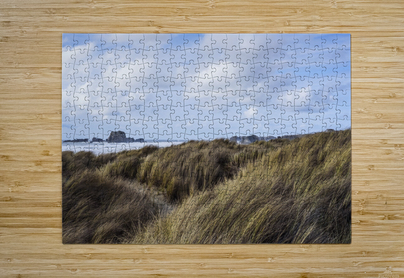 Grass and clouds frame a scene along the coast; Bandon, Oregon, United States of America  HD Metal print with Floating Frame on Back