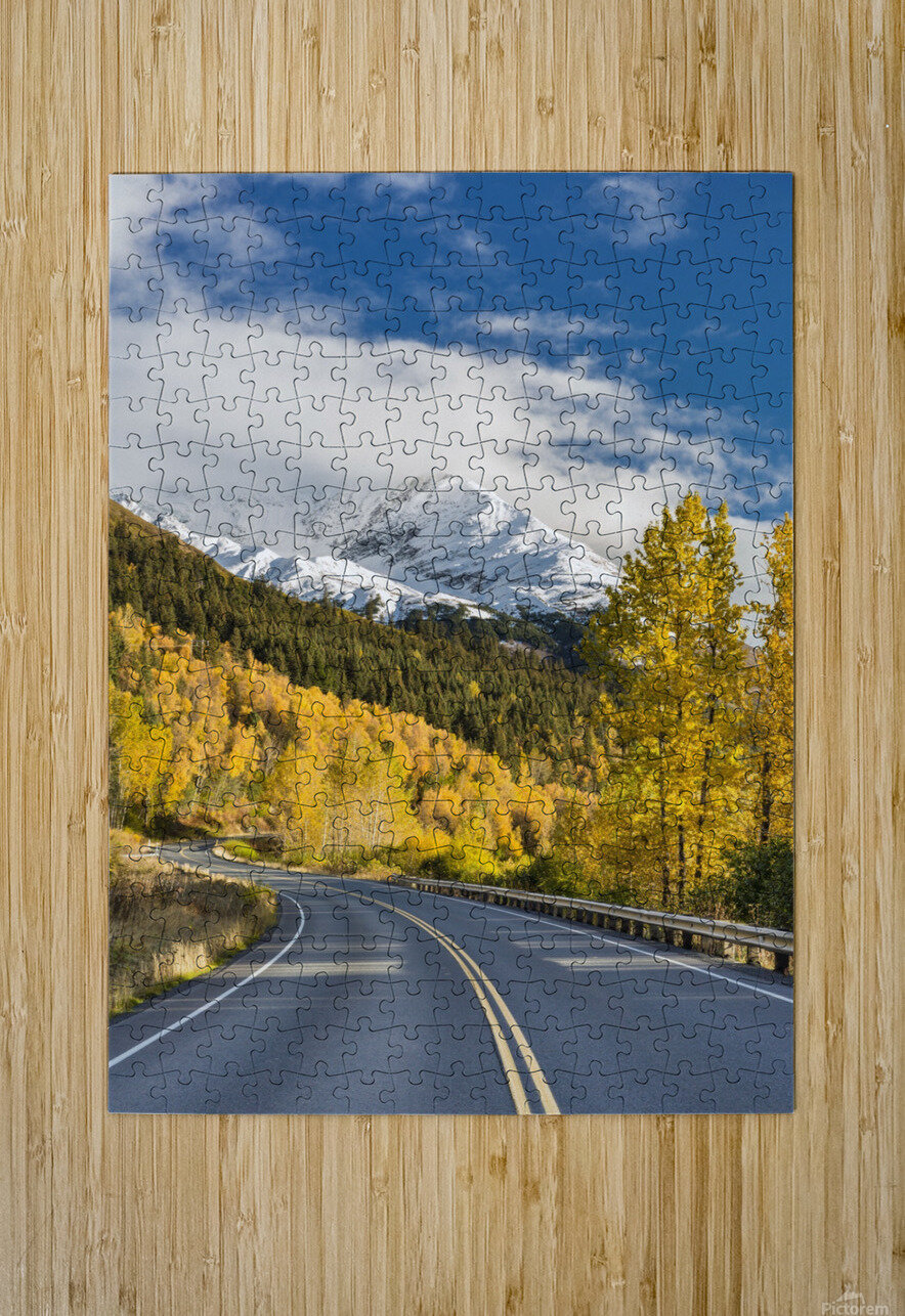Snow-capped Kenai Mountains dwarf the Seward highway, trees covered in yellow leaves in autumn line the road, South-central Alaska; Seward, Alaska, United States of America  HD Metal print with Floating Frame on Back