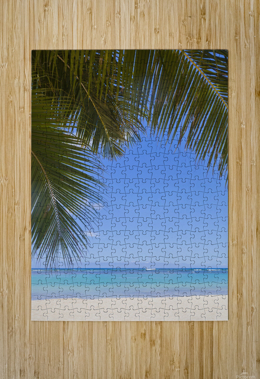 Beautiful clear day on a white sandy beach with coconut palm tree fronds hanging above; Honolulu, Oahu, Hawaii, United States of America  HD Metal print with Floating Frame on Back