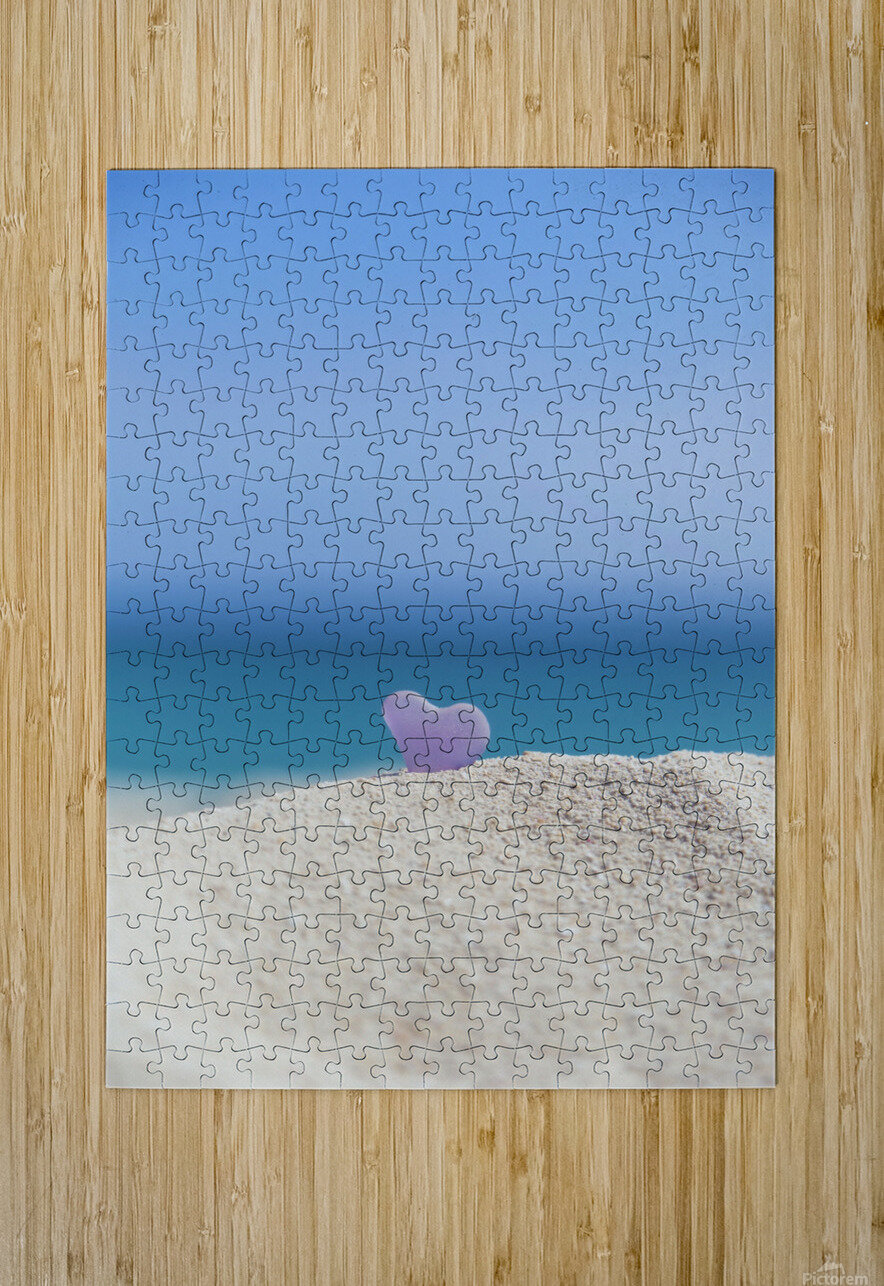 A lavender heart shaped sea glass in the sand at the beach; Honolulu, Oahu, Hawaii, United States of America  HD Metal print with Floating Frame on Back