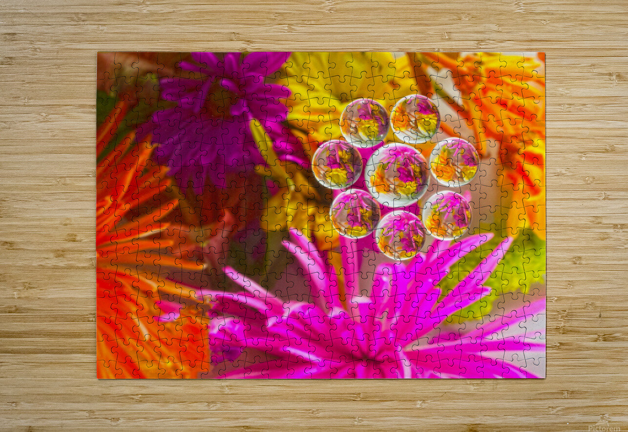 FLOWERS REFRACTION 12  HD Metal print with Floating Frame on Back