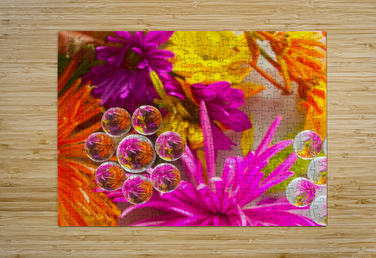 FLOWERS REFRACTION 10  HD Metal print with Floating Frame on Back