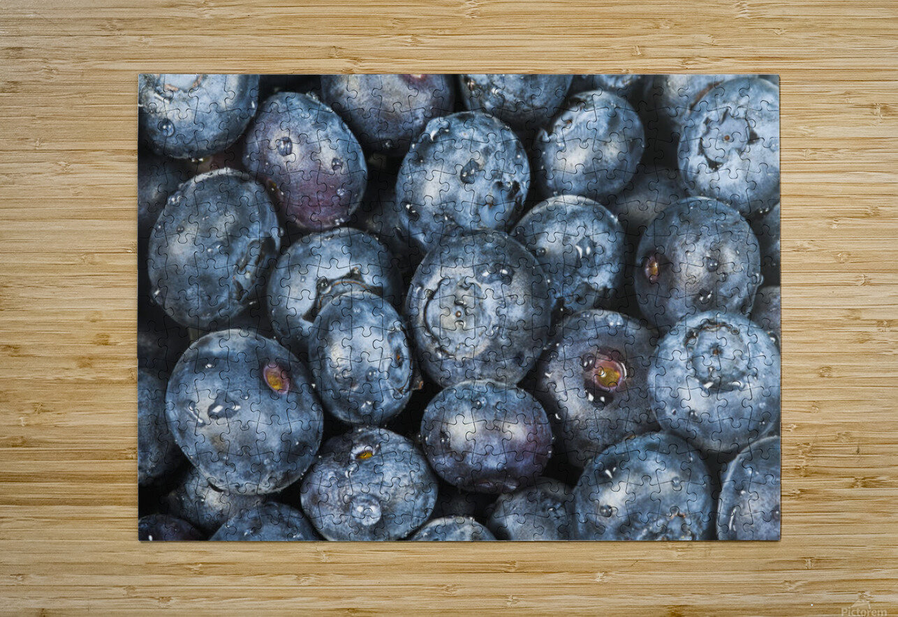 Close up shot of several fresh blueberries.  HD Metal print with Floating Frame on Back