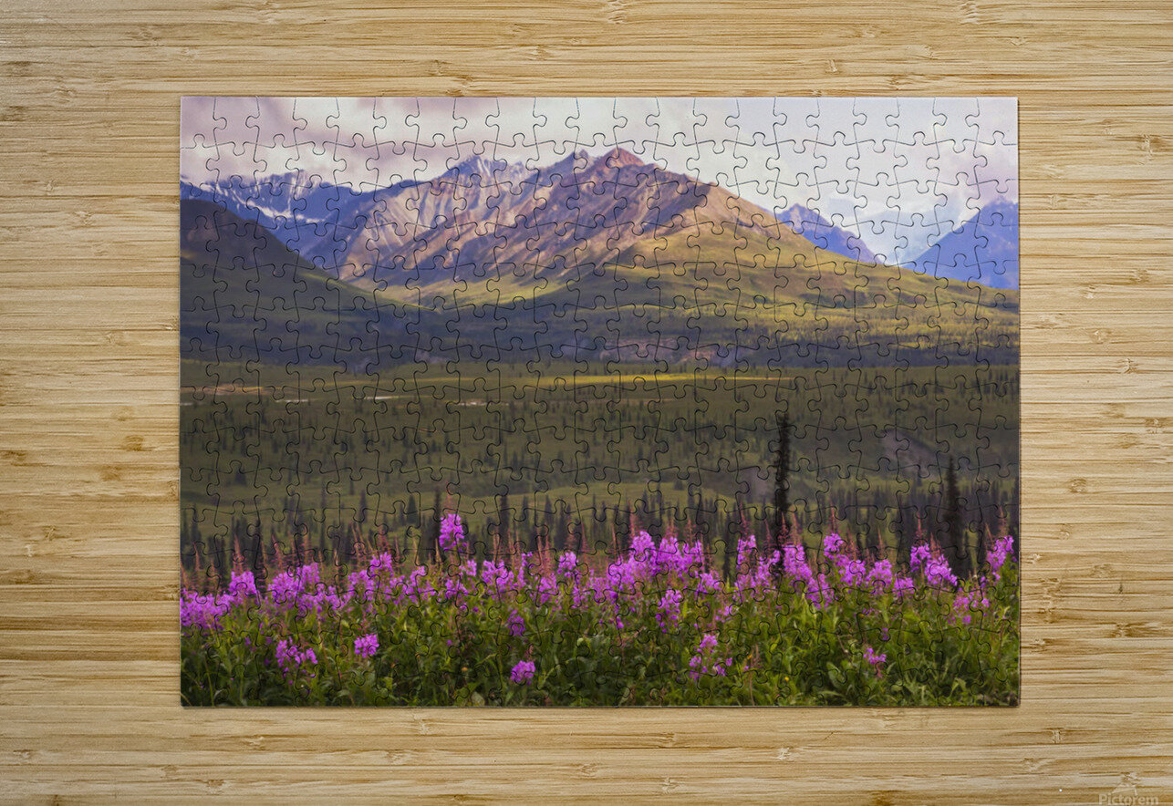 View Of The Chugach Mountains With Fireweed In The Foreground Along The Glenn Highway, Southcentral Alaska, Summer, Hdr  HD Metal print with Floating Frame on Back