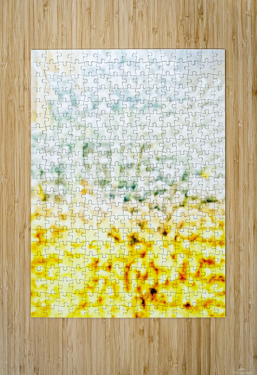 BURST - YELLOW & WHITE  HD Metal print with Floating Frame on Back