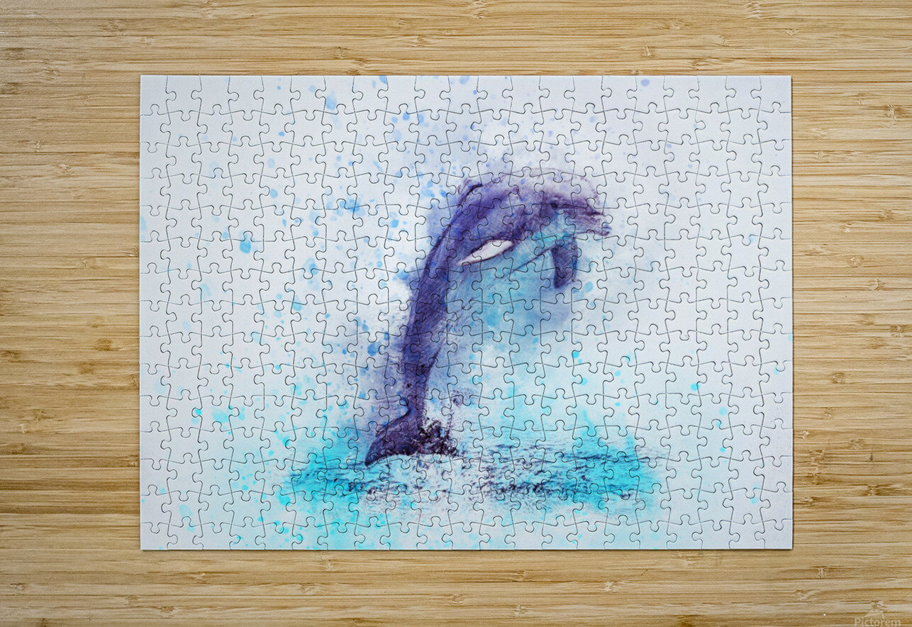 dolphin  HD Metal print with Floating Frame on Back