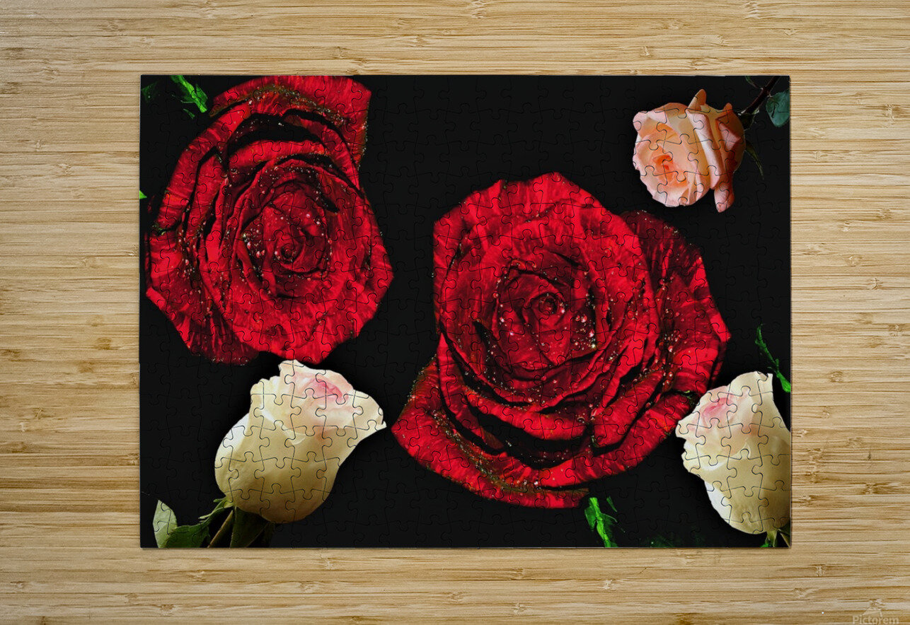 Crazy Roses  HD Metal print with Floating Frame on Back