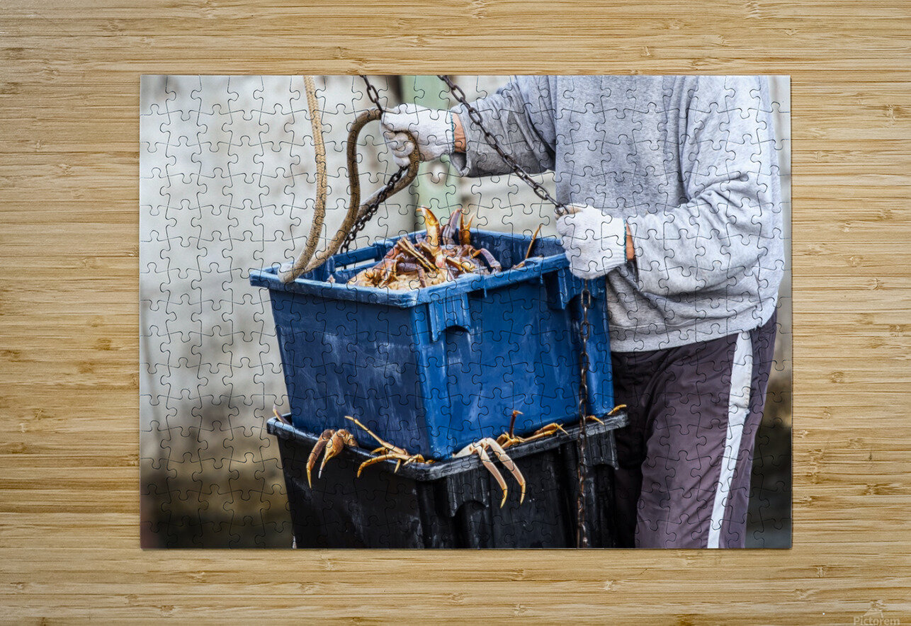 Snowcrab  HD Metal print with Floating Frame on Back