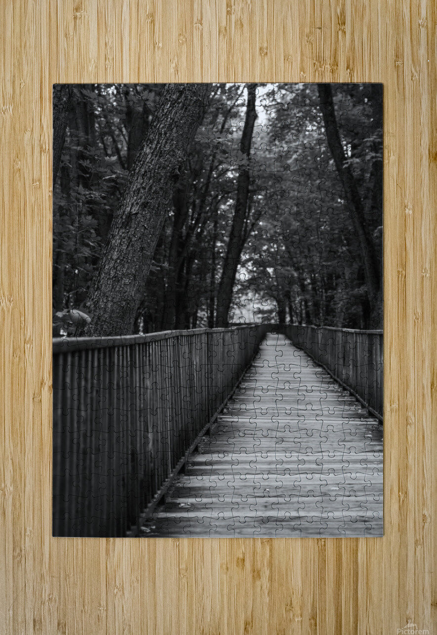 A long way  HD Metal print with Floating Frame on Back