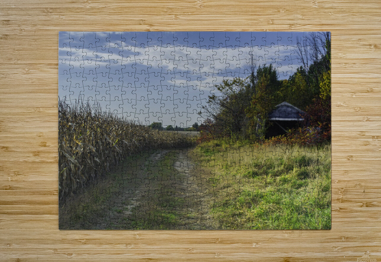 A sunny autumn day  HD Metal print with Floating Frame on Back