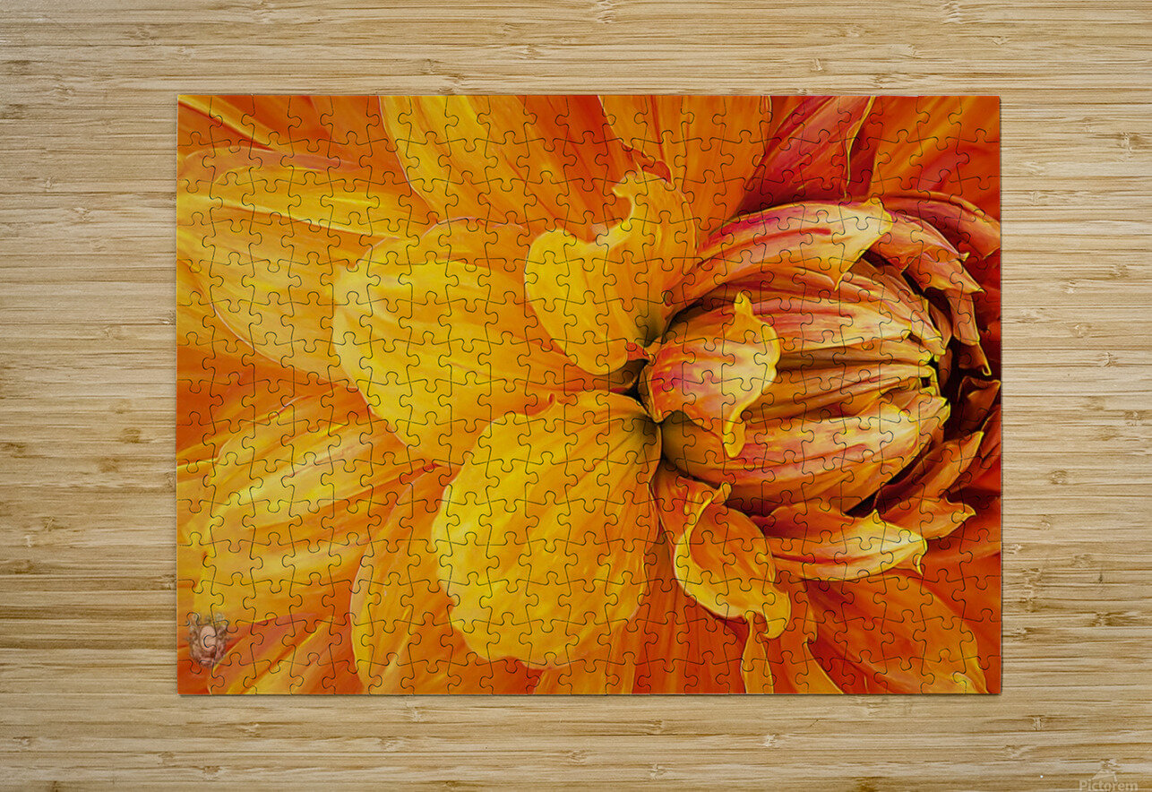 From My Garden With Love 04  HD Metal print with Floating Frame on Back