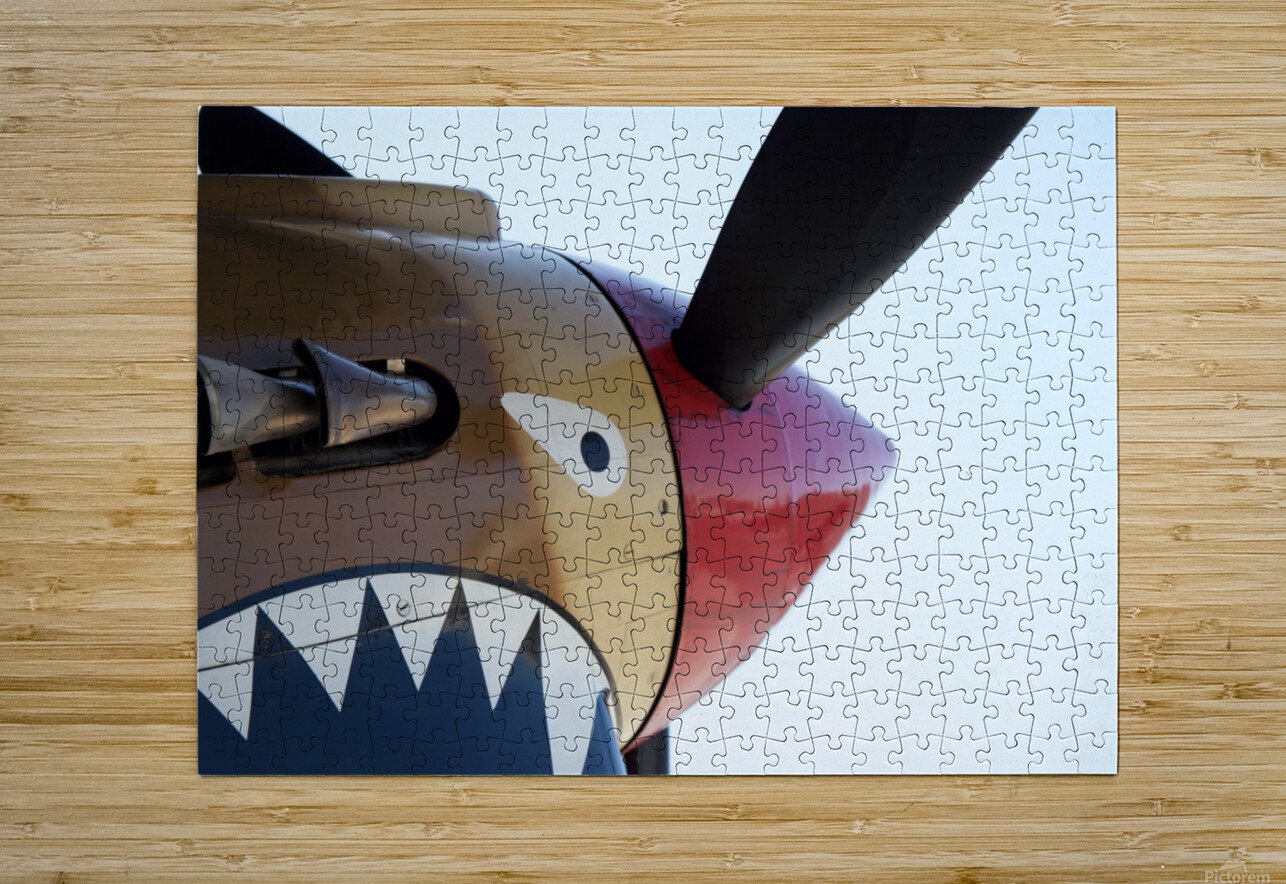 P-40 Warhawk Nose  HD Metal print with Floating Frame on Back