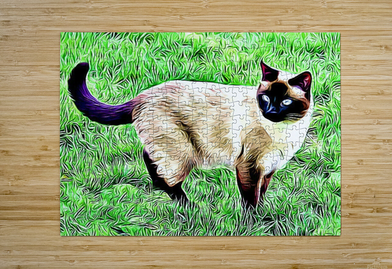 CAT3  HD Metal print with Floating Frame on Back