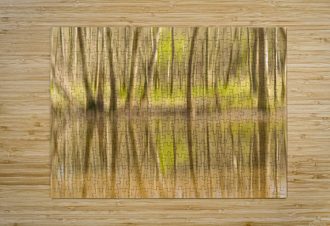 forest park reflections  HD Metal print with Floating Frame on Back