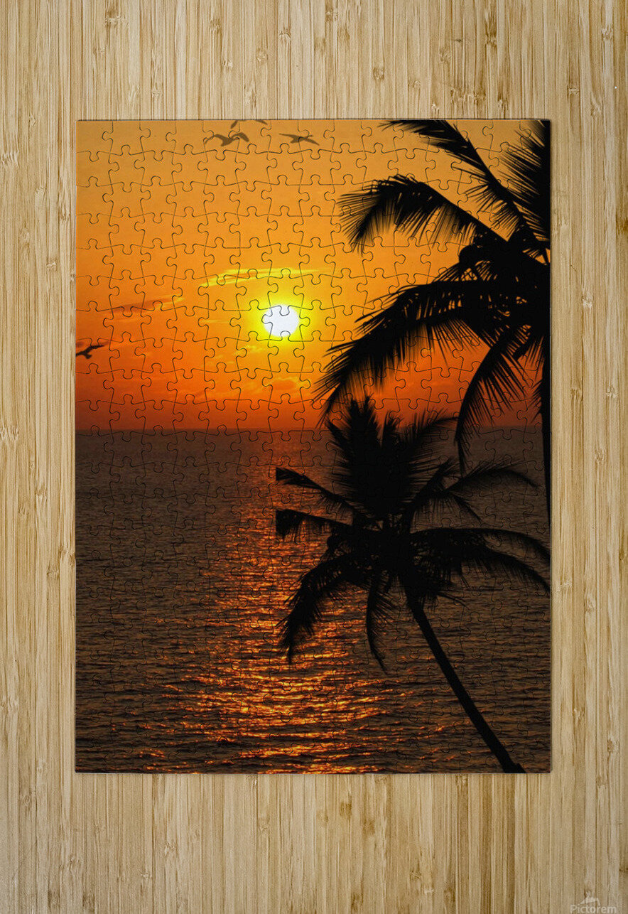 Unknown Paradise  HD Metal print with Floating Frame on Back