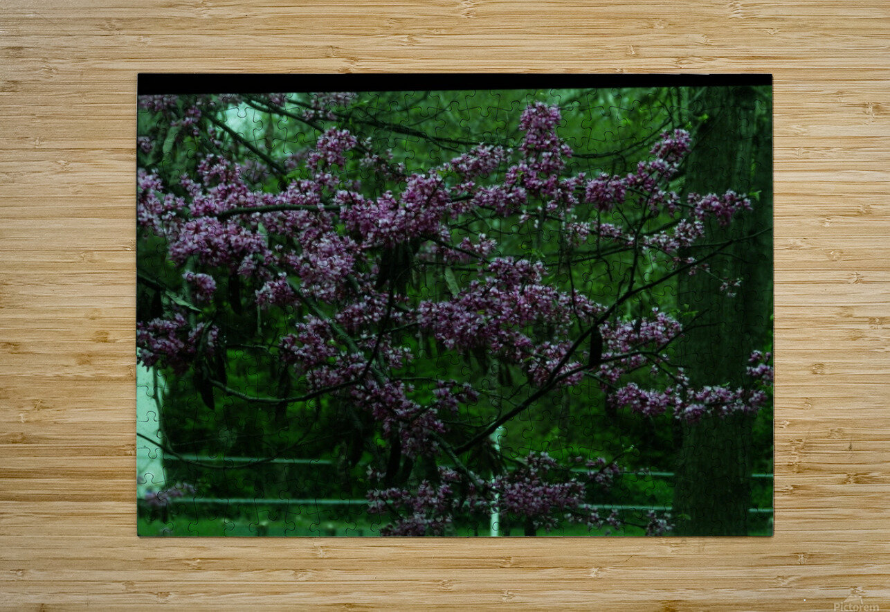 A (15)  HD Metal print with Floating Frame on Back